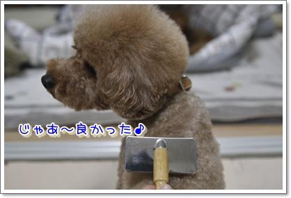 f_20100125215509.jpg