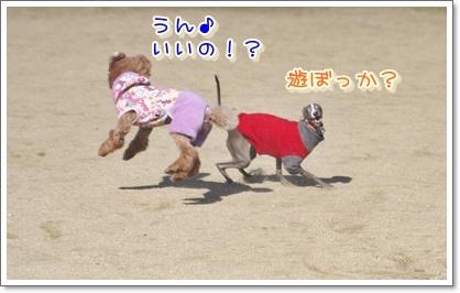 h_20100124215417.jpg