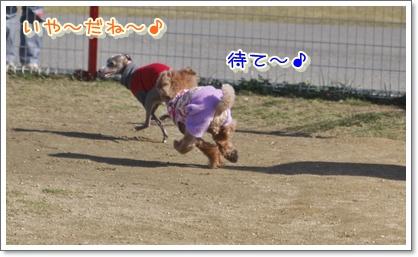 i_20100124215417.jpg