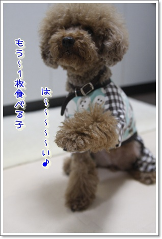 m_20100123024510.jpg