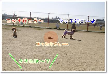p_20100124220744.jpg