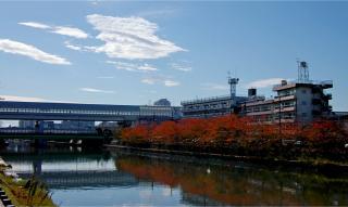20051113_akizora1.jpg