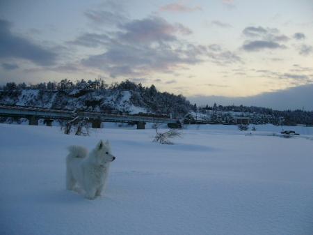 雪里って感じ~。しみじみ田舎