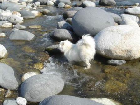 水風呂サイコー!