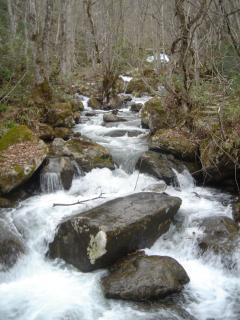 寒々しい四十八滝