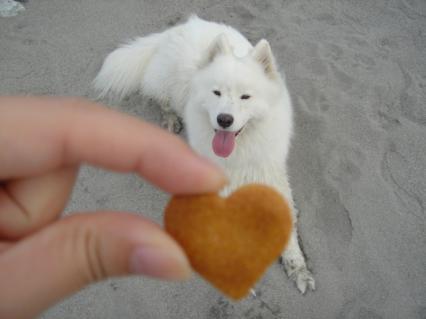 ハートのクッキー♪