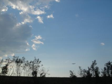 写真にしてみたら飛行機ちっちゃい