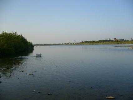 すごい大河に見える