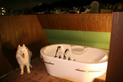 なんちゃって露天風呂