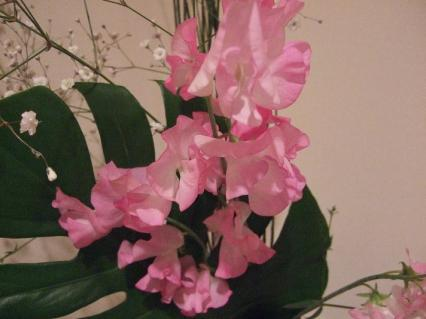 かわいいお花過ぎて照れる
