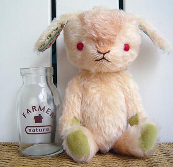 こんなウサギ