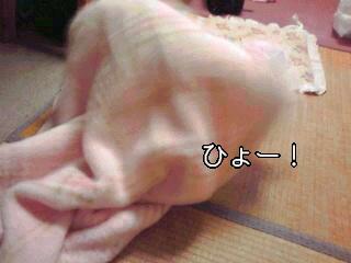 hyo-.jpg