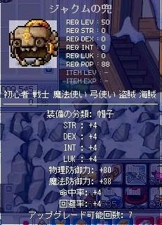 ms20081005f.jpg