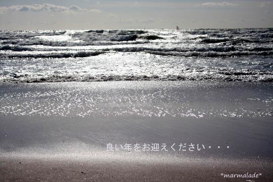 IMG_3009s-.jpg
