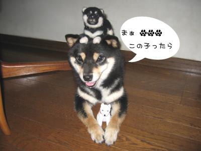 natsuchirren1.jpg