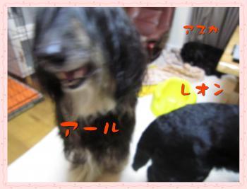 012_convert_20110306153336.jpg