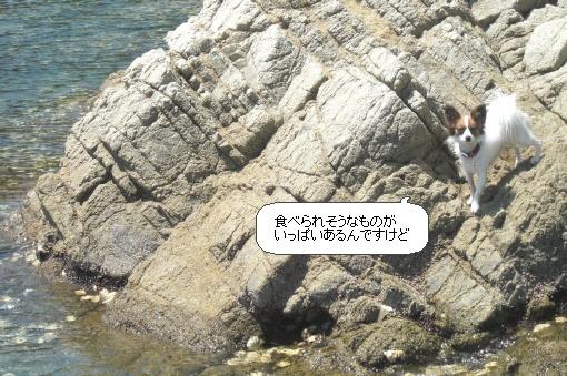 image5468184.jpg