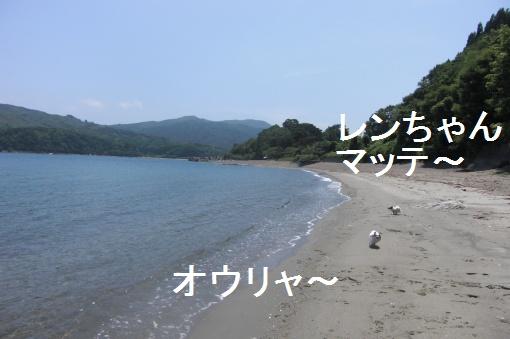 image547008.jpg