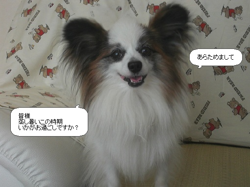 image6561674.jpg