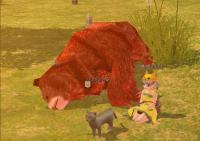 赤クマといっしょ!
