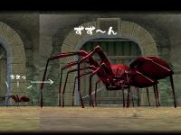クモの観察日記