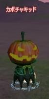子供のかぼちゃ