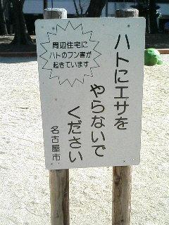 20080221184338.jpg