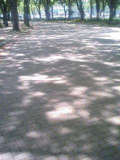 20080421_3