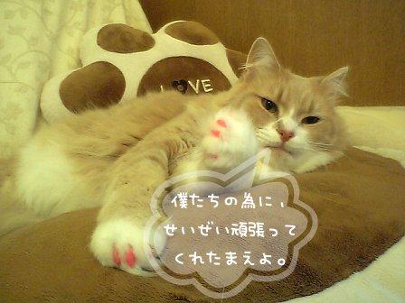 07-11-01_11-22.jpg