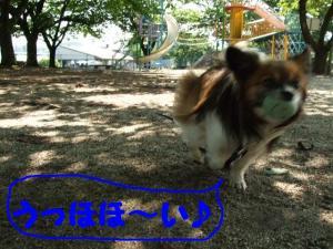 2009624-2.jpg