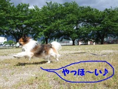 200969-1.jpg