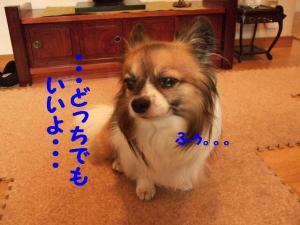 2009714-19.jpg