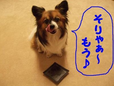 2009718-11.jpg