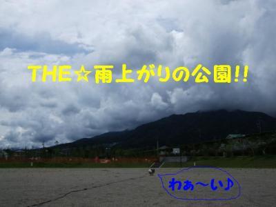 200972-1.jpg