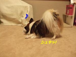 200989-1.jpg