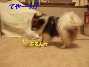 200989-4.jpg