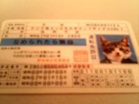 20051111203754.jpg