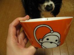 ニューお茶碗♪