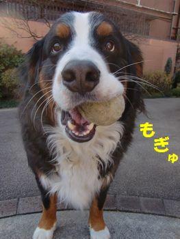 大好きなボールで笑顔になるの!