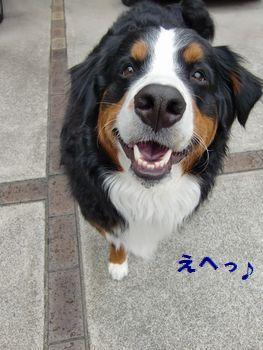 笑顔お届け隊!!