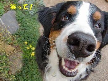 笑顔が好きだもん。
