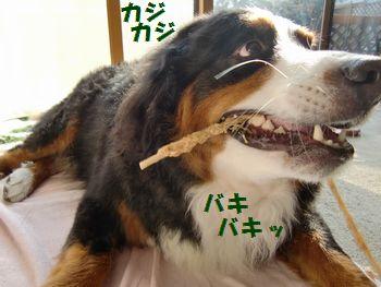 食べ応えある~!!