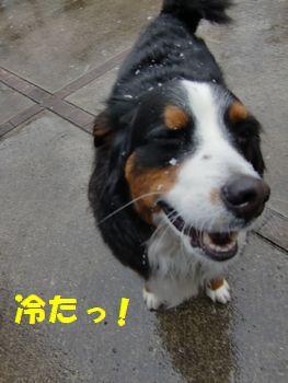 冷たいって~!!