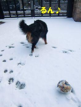 雪♪るんっ♪