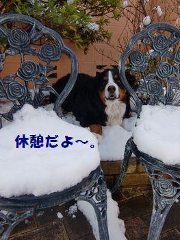 雪の休憩最高~!!
