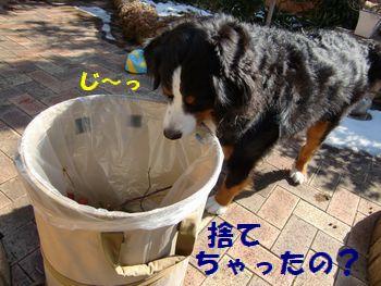 もったいな~い!!