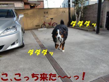 お姉ちゃん発見~!!