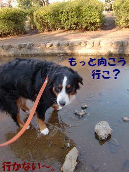 ちょっと濡れちゃうだけだよ??