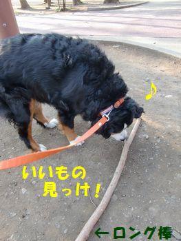 ロングな棒があるの~!!