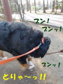 僕の棒~!!ロング棒~!!